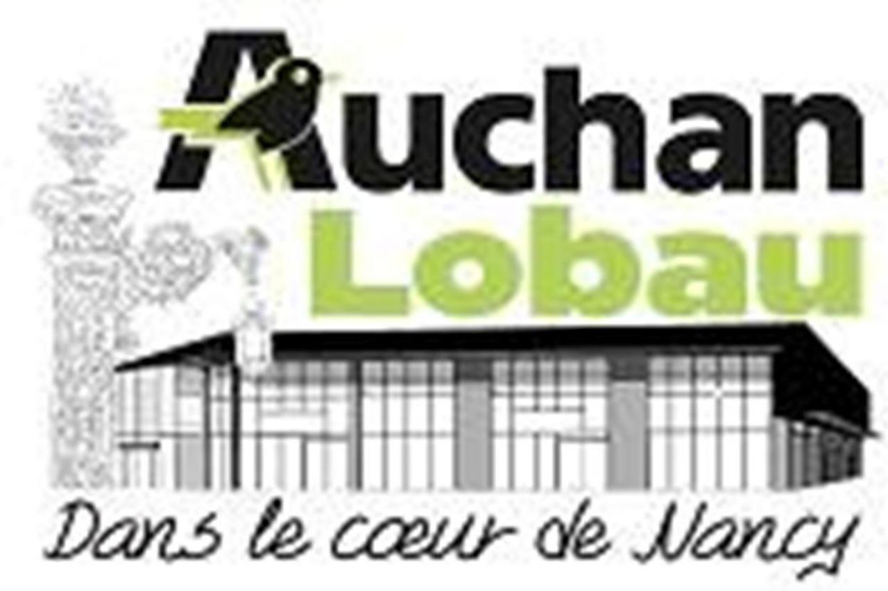 auchan lobau. Black Bedroom Furniture Sets. Home Design Ideas