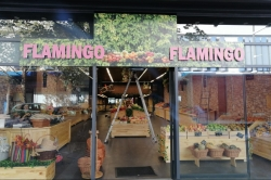 Flamingo - Alimentation / Gourmandises  Nancy